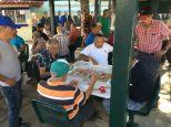 Miami City Tour - Little Havana, Dominos Park
